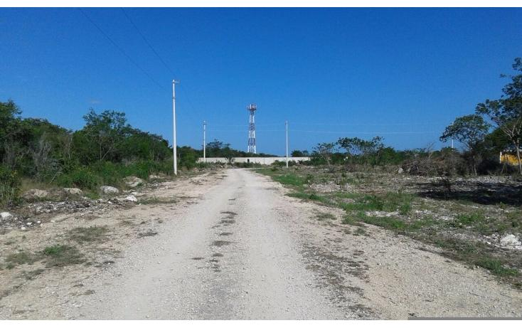 Foto de terreno habitacional en venta en  , dzitya, mérida, yucatán, 1962775 No. 02