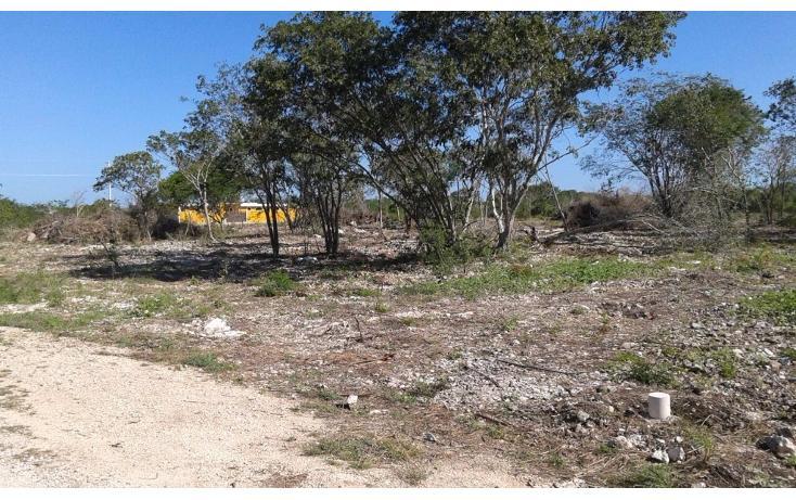 Foto de terreno habitacional en venta en  , dzitya, mérida, yucatán, 1962775 No. 03