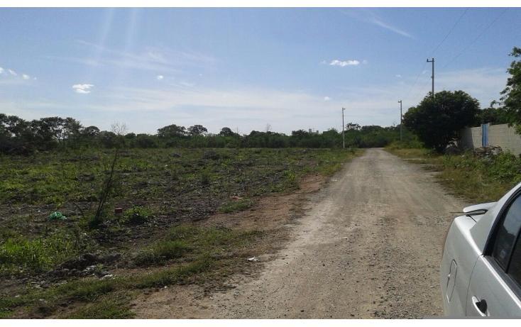 Foto de terreno habitacional en venta en  , dzitya, mérida, yucatán, 1962775 No. 05