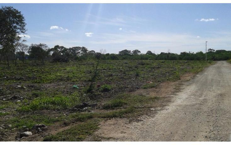 Foto de terreno habitacional en venta en  , dzitya, mérida, yucatán, 1962775 No. 06