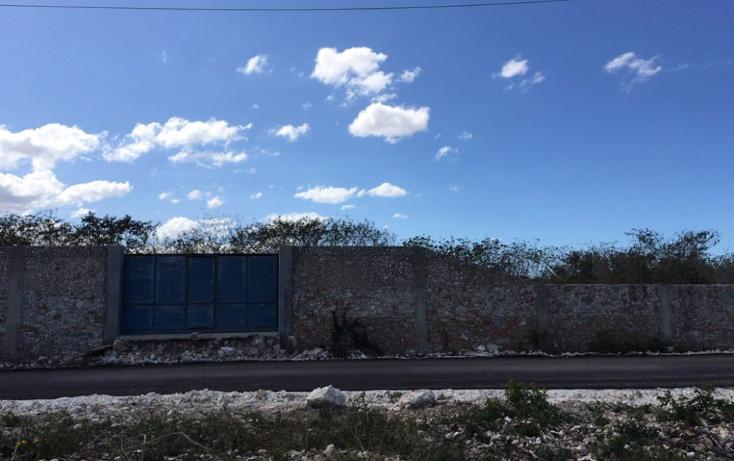 Foto de terreno habitacional en venta en  , dzitya, mérida, yucatán, 1974984 No. 01