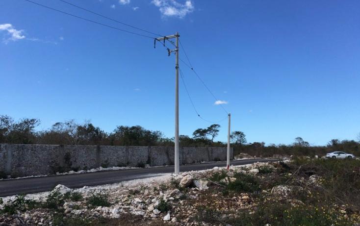 Foto de terreno habitacional en venta en  , dzitya, mérida, yucatán, 1974984 No. 03