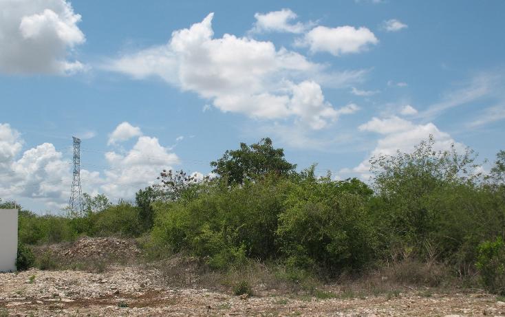 Foto de terreno habitacional en venta en  , dzitya, mérida, yucatán, 1975566 No. 04