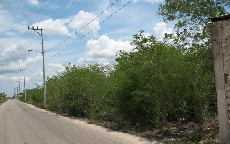 Foto de terreno habitacional en venta en  , dzitya, mérida, yucatán, 1975576 No. 02