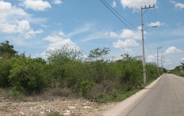 Foto de terreno habitacional en venta en, dzitya, mérida, yucatán, 1975576 no 05