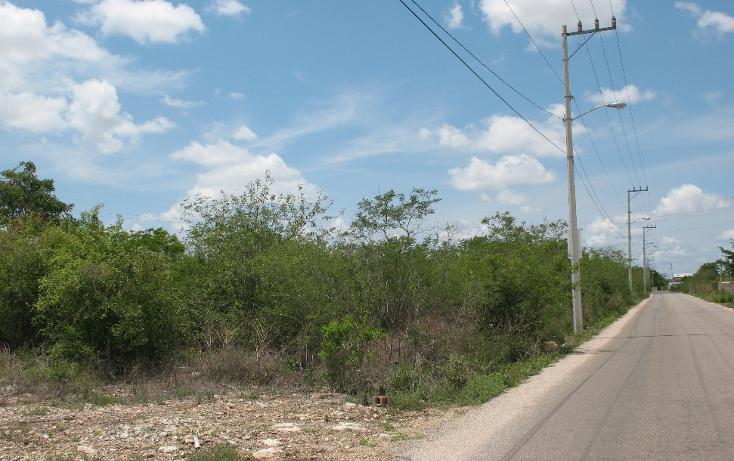 Foto de terreno habitacional en venta en  , dzitya, mérida, yucatán, 1975576 No. 05