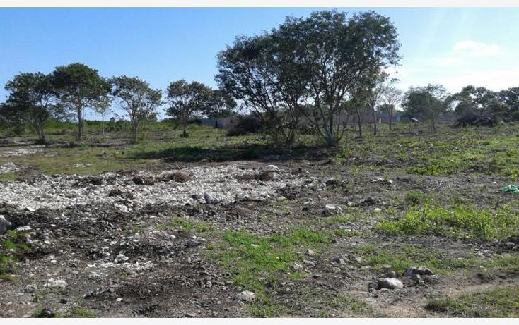 Foto de terreno habitacional en venta en  , dzitya, mérida, yucatán, 1992640 No. 04