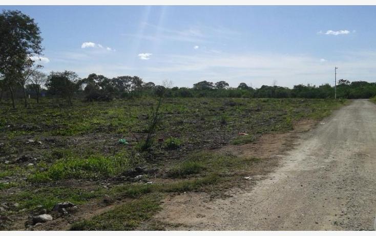 Foto de terreno habitacional en venta en  , dzitya, mérida, yucatán, 1992640 No. 06
