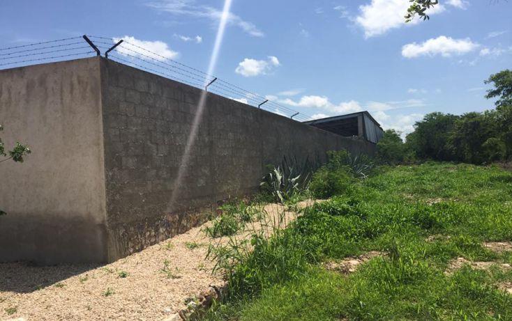 Foto de terreno habitacional en venta en, dzitya, mérida, yucatán, 2011696 no 03