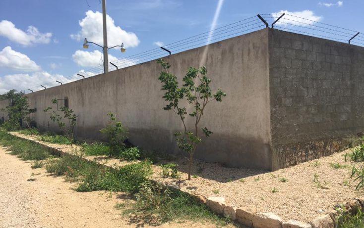 Foto de terreno habitacional en venta en, dzitya, mérida, yucatán, 2011696 no 04