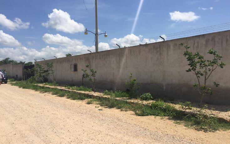 Foto de terreno habitacional en venta en, dzitya, mérida, yucatán, 2011696 no 05