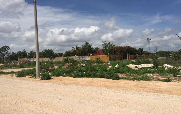 Foto de terreno habitacional en venta en, dzitya, mérida, yucatán, 2011696 no 08