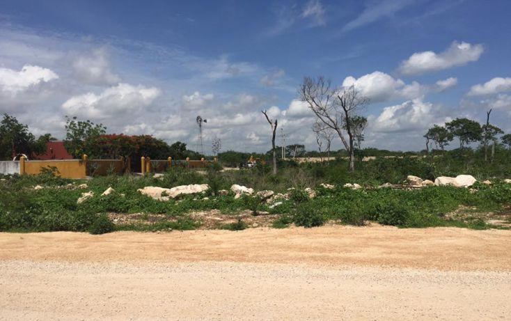Foto de terreno habitacional en venta en, dzitya, mérida, yucatán, 2011696 no 09