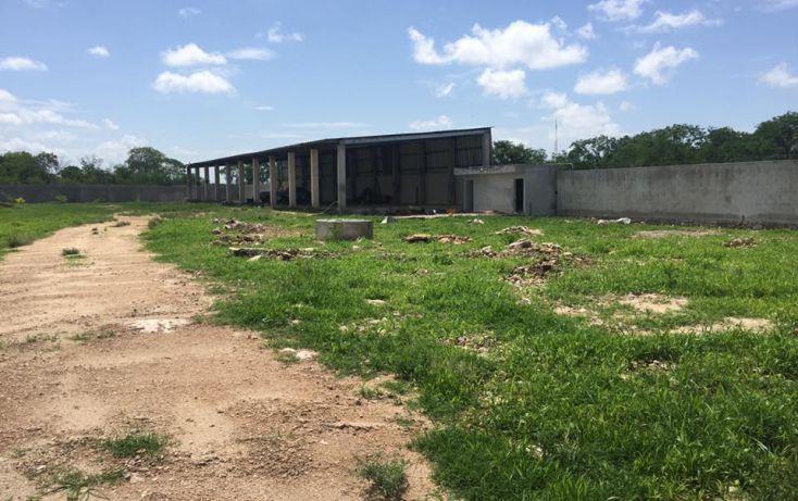 Foto de terreno habitacional en venta en, dzitya, mérida, yucatán, 2011696 no 11