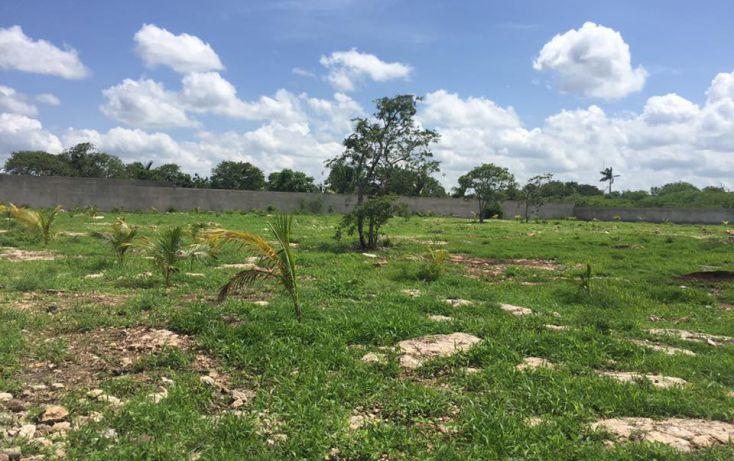 Foto de terreno habitacional en venta en, dzitya, mérida, yucatán, 2011696 no 12