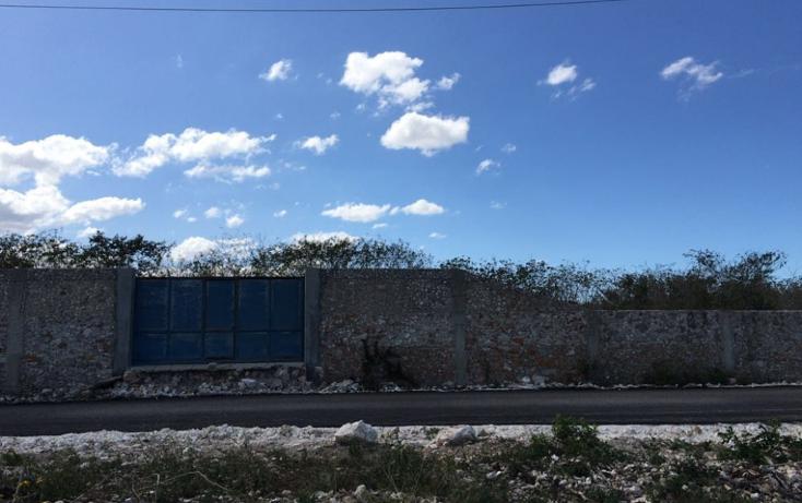 Foto de terreno habitacional en venta en  , dzitya, mérida, yucatán, 2019838 No. 03