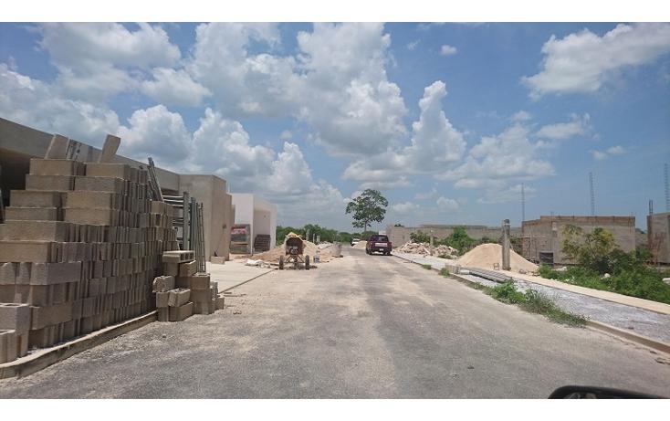 Foto de terreno habitacional en venta en  , dzitya, m?rida, yucat?n, 2038118 No. 02