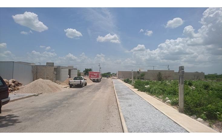 Foto de terreno habitacional en venta en  , dzitya, m?rida, yucat?n, 2038118 No. 06