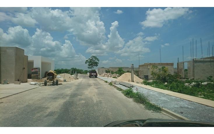 Foto de terreno habitacional en venta en  , dzitya, m?rida, yucat?n, 2038118 No. 09