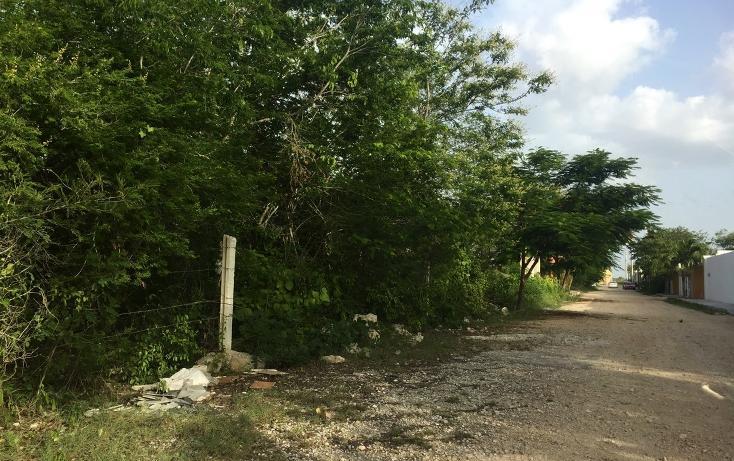 Foto de terreno habitacional en venta en  , dzitya, mérida, yucatán, 2042489 No. 01