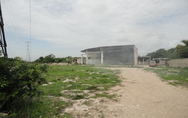 Foto de local en venta en  , dzitya, mérida, yucatán, 448048 No. 13