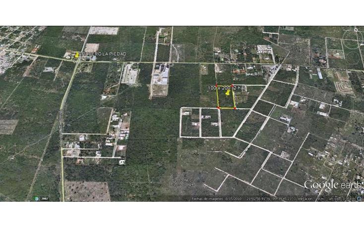 Foto de terreno habitacional en venta en  , dzitya, mérida, yucatán, 737687 No. 05