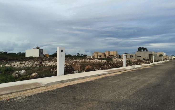 Foto de terreno habitacional en venta en  , dzitya, mérida, yucatán, 737691 No. 05