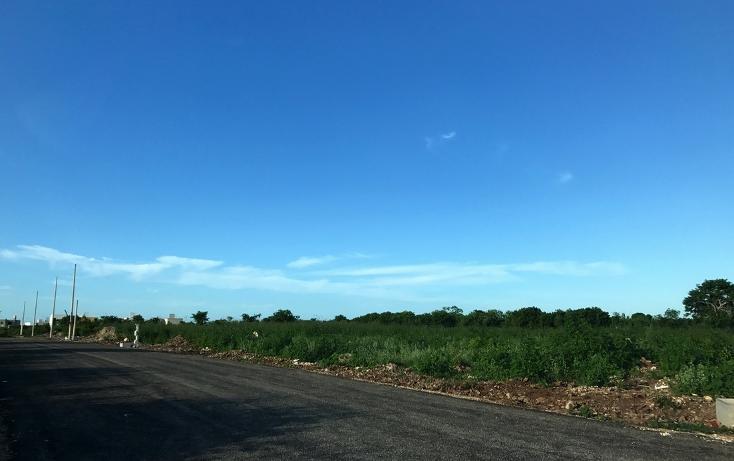 Foto de terreno habitacional en venta en  , dzitya, mérida, yucatán, 737691 No. 06