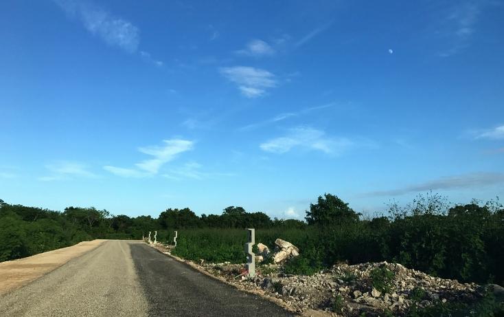 Foto de terreno habitacional en venta en  , dzitya, mérida, yucatán, 737691 No. 07