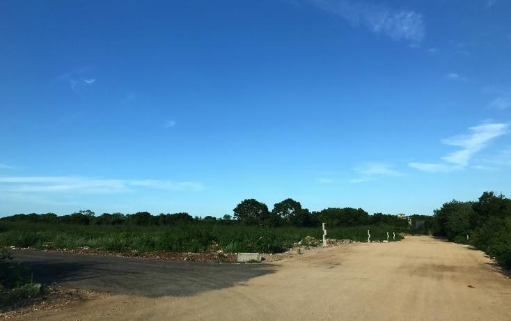 Foto de terreno habitacional en venta en  , dzitya, mérida, yucatán, 737691 No. 08