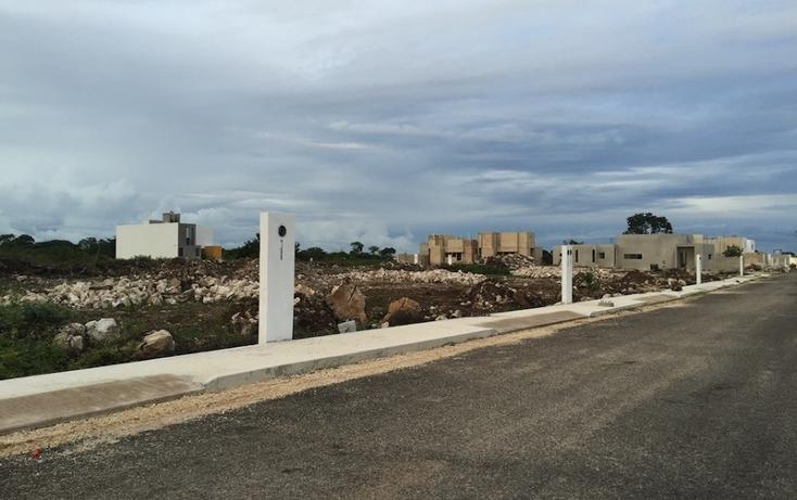 Foto de terreno habitacional en venta en  , dzitya, mérida, yucatán, 878527 No. 02