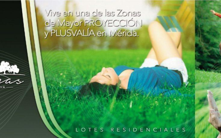 Foto de terreno habitacional en venta en, dzitya, mérida, yucatán, 878527 no 08