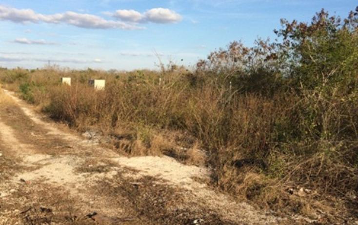 Foto de terreno habitacional en venta en  , dzitya, mérida, yucatán, 945779 No. 05