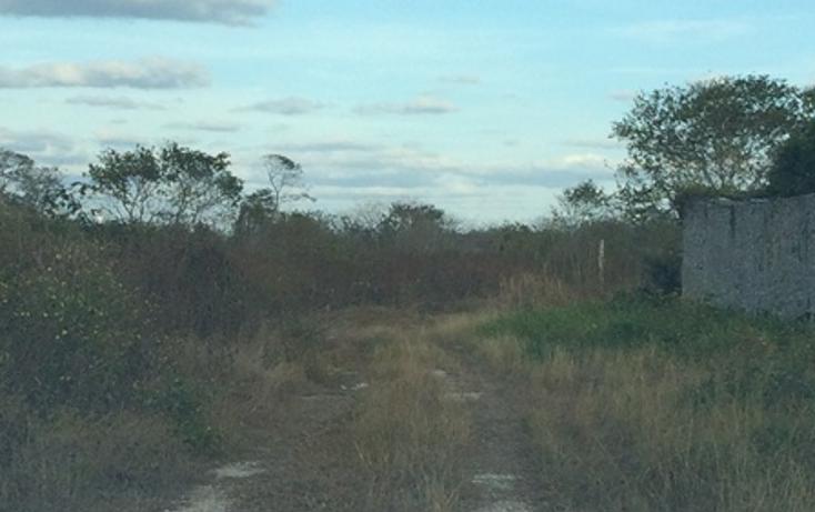 Foto de terreno habitacional en venta en  , dzitya, mérida, yucatán, 945779 No. 07