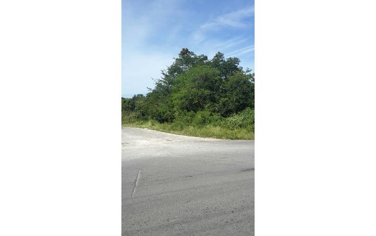 Foto de terreno comercial en venta en  , dzununc?n, m?rida, yucat?n, 1274065 No. 05