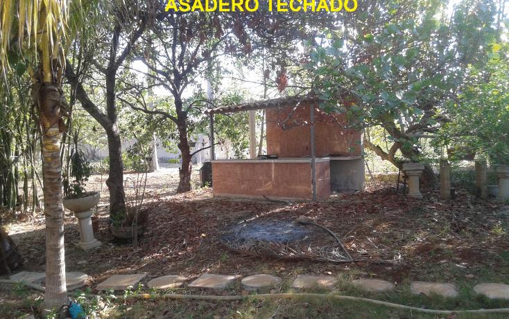 Foto de terreno comercial en venta en  , dzununc?n, m?rida, yucat?n, 1955453 No. 05