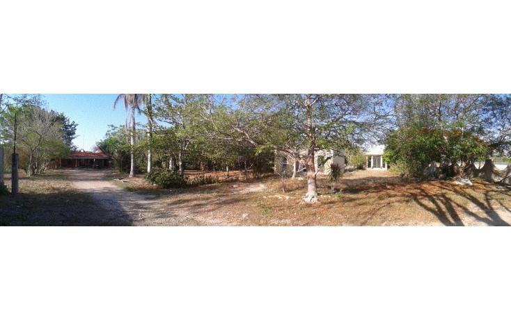 Foto de terreno comercial en venta en  , dzununc?n, m?rida, yucat?n, 1955453 No. 09