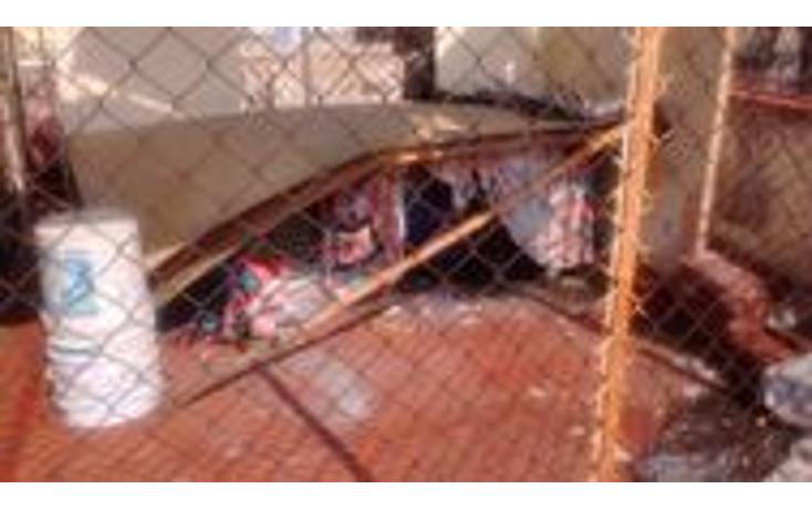 Foto de casa en venta en  , educación, coyoacán, distrito federal, 1410769 No. 24