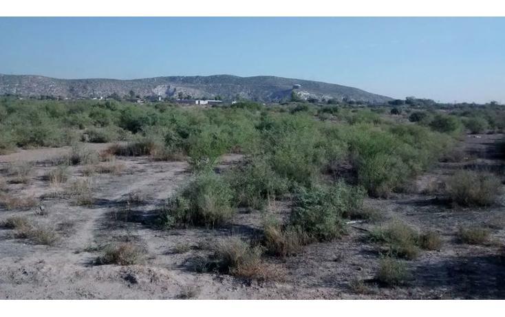 Foto de terreno habitacional en venta en  , ejidal, gómez palacio, durango, 1432831 No. 03