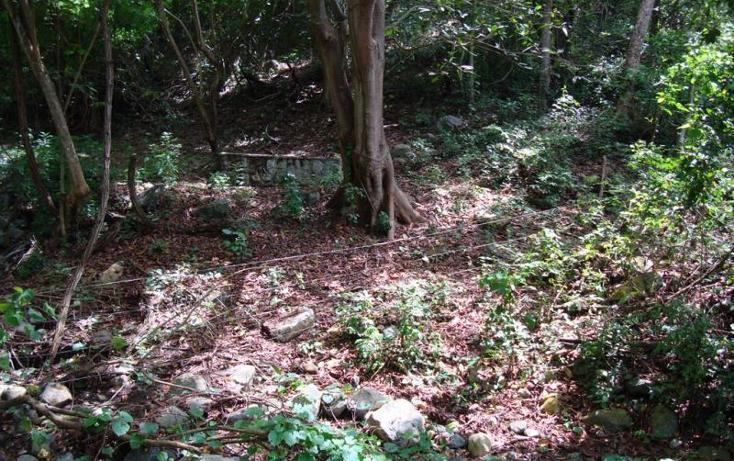 Foto de terreno comercial en venta en  , ejidal miramar, manzanillo, colima, 1837366 No. 08