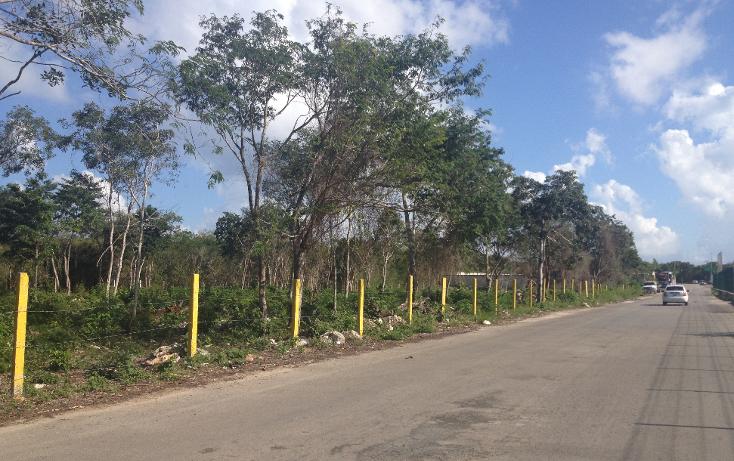 Foto de terreno habitacional en venta en  , ejidal, solidaridad, quintana roo, 1052191 No. 07