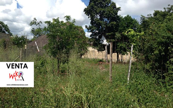 Foto de terreno habitacional en venta en  , ejidal, solidaridad, quintana roo, 1121189 No. 02