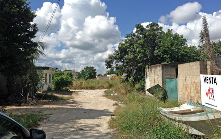 Foto de terreno habitacional en venta en  , ejidal, solidaridad, quintana roo, 1121189 No. 04