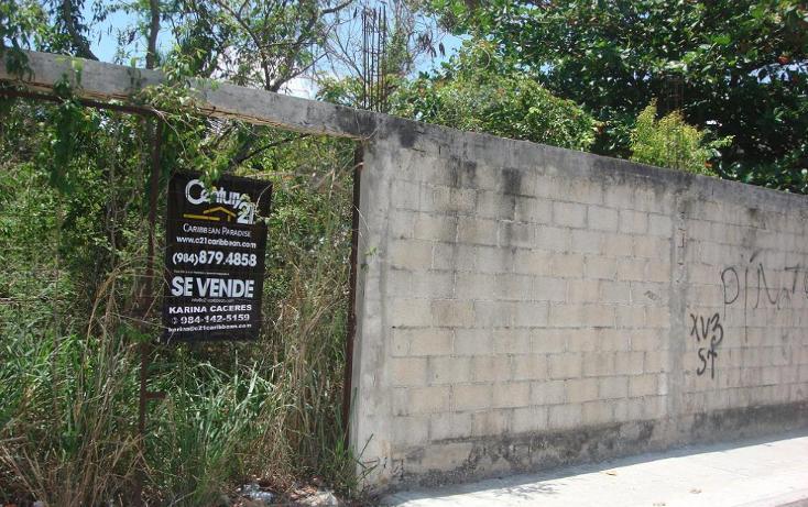 Foto de terreno habitacional en venta en  , ejidal, solidaridad, quintana roo, 1275283 No. 05
