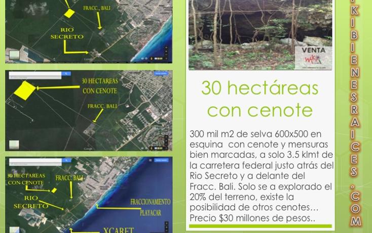 Foto de terreno habitacional en venta en  , ejidal, solidaridad, quintana roo, 1284157 No. 04