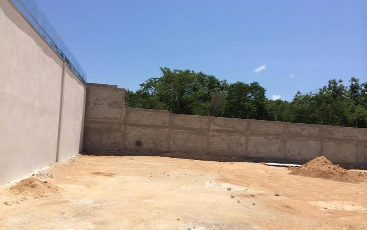 Foto de terreno comercial en renta en  , ejidal, solidaridad, quintana roo, 1293633 No. 04