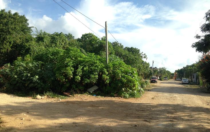 Foto de terreno habitacional en venta en  , ejidal, solidaridad, quintana roo, 1369833 No. 03