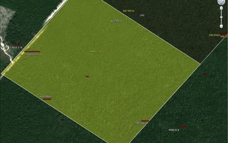 Foto de terreno habitacional en venta en  , ejidal, solidaridad, quintana roo, 1381041 No. 02