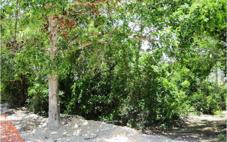 Foto de terreno habitacional en venta en  , ejidal, solidaridad, quintana roo, 1386821 No. 02