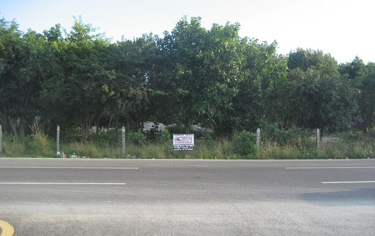 Foto de terreno comercial en renta en  , ejidal, solidaridad, quintana roo, 1665584 No. 01